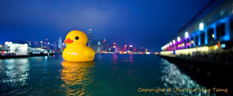 Yellow Duck in Hong Kong